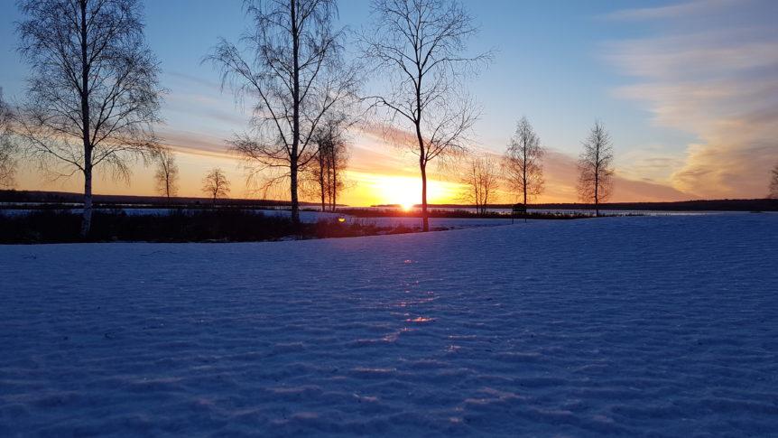 Vintersol över green 6